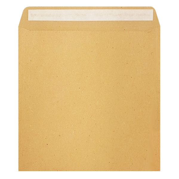 Wages Pocket Packet Envelope